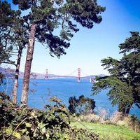 San Francisco !!!! Vous connaissez ? ⠀⠀ J'adore cette ville !!!! Des balades à vélo, des cours de yoga face au Golden Gate. ⠀⠀ Du shopping à gogo, des restaurants So healthy..... ⠀⠀ D'ailleurs c'est là-bas que j'ai fait mon second tatouage, j'aime l'idée de raconter une histoire avec mes tatouages, vous n'êtes pas surpris c'est que vous me suivez depuis quelque temps ou que vous me connaissez bien 😉. Tous mes tatouages ont été réalisé lors d'une escale, mais ça c'est une autre histoire !!! ⠀⠀ Ça fait un petit moment que je vous parle d'un carnet de voyage, hé ben voilà la première destination sera San Francisco.... ⠀⠀ Tous les mois, il y aura une destination à l'honneur !!! ⠀⠀ Car Sathyne c'est aussi des voyages, où je puise mon inspiration pour chaque bijou, chaque collection. #filledexpat #expatlife ⠀⠀ À très vite pour découvrir les bonnes adresses ! Avec #Sathynebijoux  #sanfrancisco #voyage #carnetdevoyage #travel #travelblogger #escale #blue #frisco